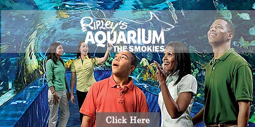 Ripley's Aquarium of the Smokies